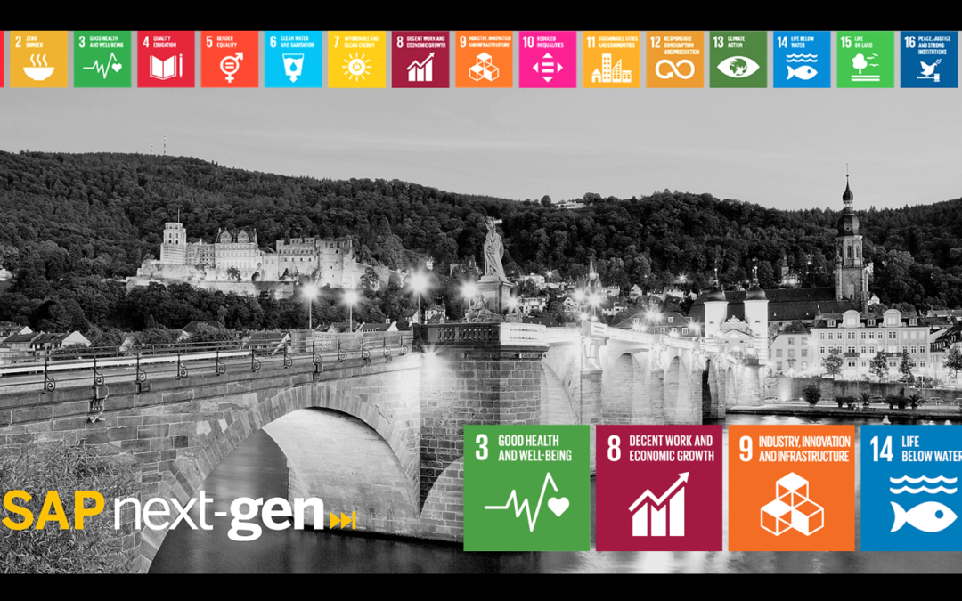 Innovation with Purpose – Global Goals Meetup Heidelberg